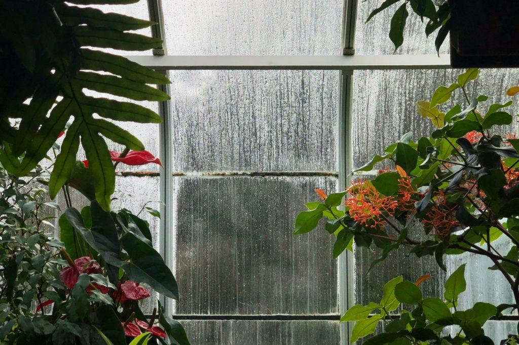 Reinigungsgeräte für Glasdach Wintergarten